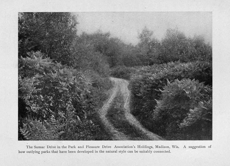 Abb-02_Charles-Mulford-Robinson_Modern-Civic-Art_1904-S-315